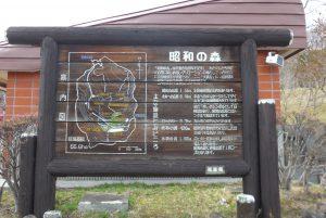 猪苗代町昭和の森P1050813