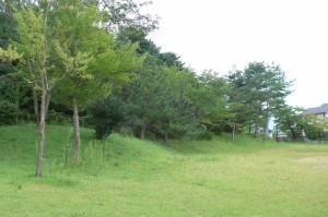 しのぶ台第1公園P1010520