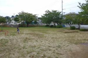 しのぶ台第2公園P1010512