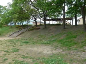 一本松公園P1000427