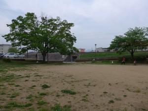 一本松公園P1000428
