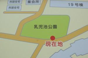 乳児池公園P1000418