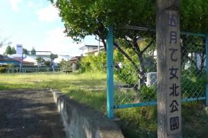 五月乙女北公園P1010104