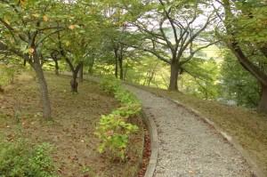 土合舘公園P1010897