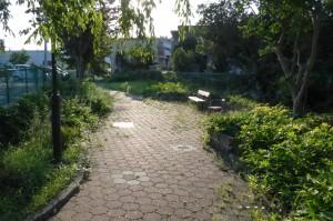 堀河町緑地公園P1010119