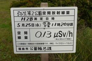 弥生第2公園P1010704