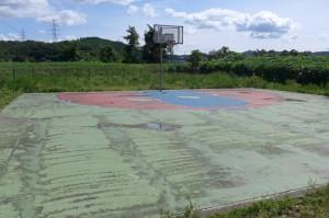 新田公園(瀬上)P1010415