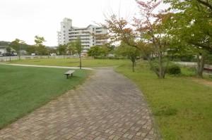 松川工業団地第一公園P1010873