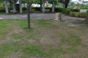 柳公園P1010095