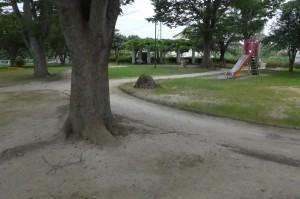 柳公園P1010097