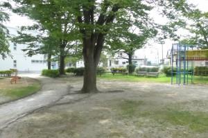 柳公園P1010103