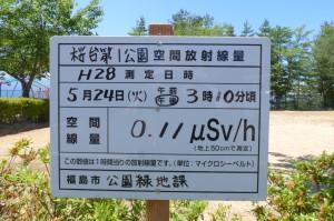桜台第1公園P1000652
