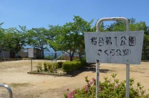 桜台第1公園P1000653