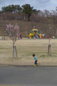 猪苗代町亀ケ城公園P1050871