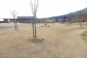 猪苗代町亀ケ城公園P1050881