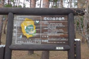 猪苗代町昭和の森P1050824