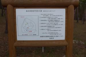 猪苗代町昭和の森P1050825