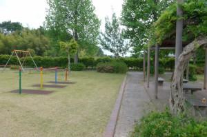 蓬莱萩公園P1000599