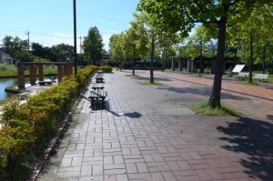 野田中央公園P1010318