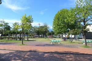 野田中央公園P1010319